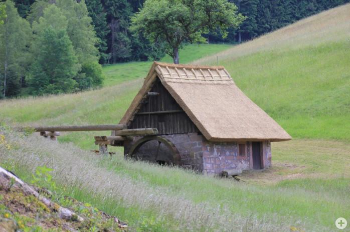 Mooswaldmühle 2016 1