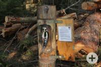 Waldmännleweg 4